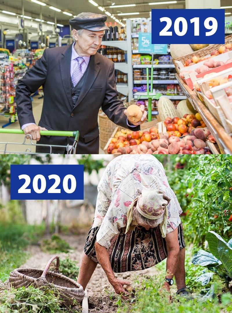 Вместо овощей из супермаркета - свои овощи со своей дачи